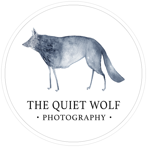 The Quiet Wolf Wedding Photography